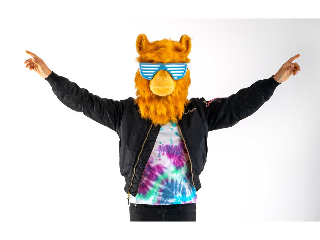 Image of LLAMA standing in front of a white background with arms up