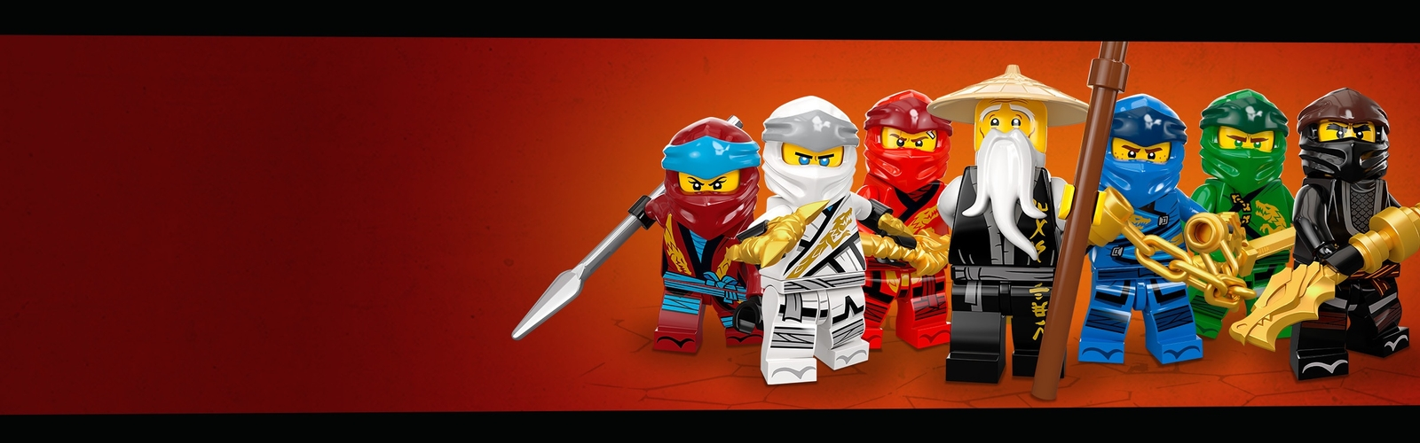 the team of LEGO NINJAGO