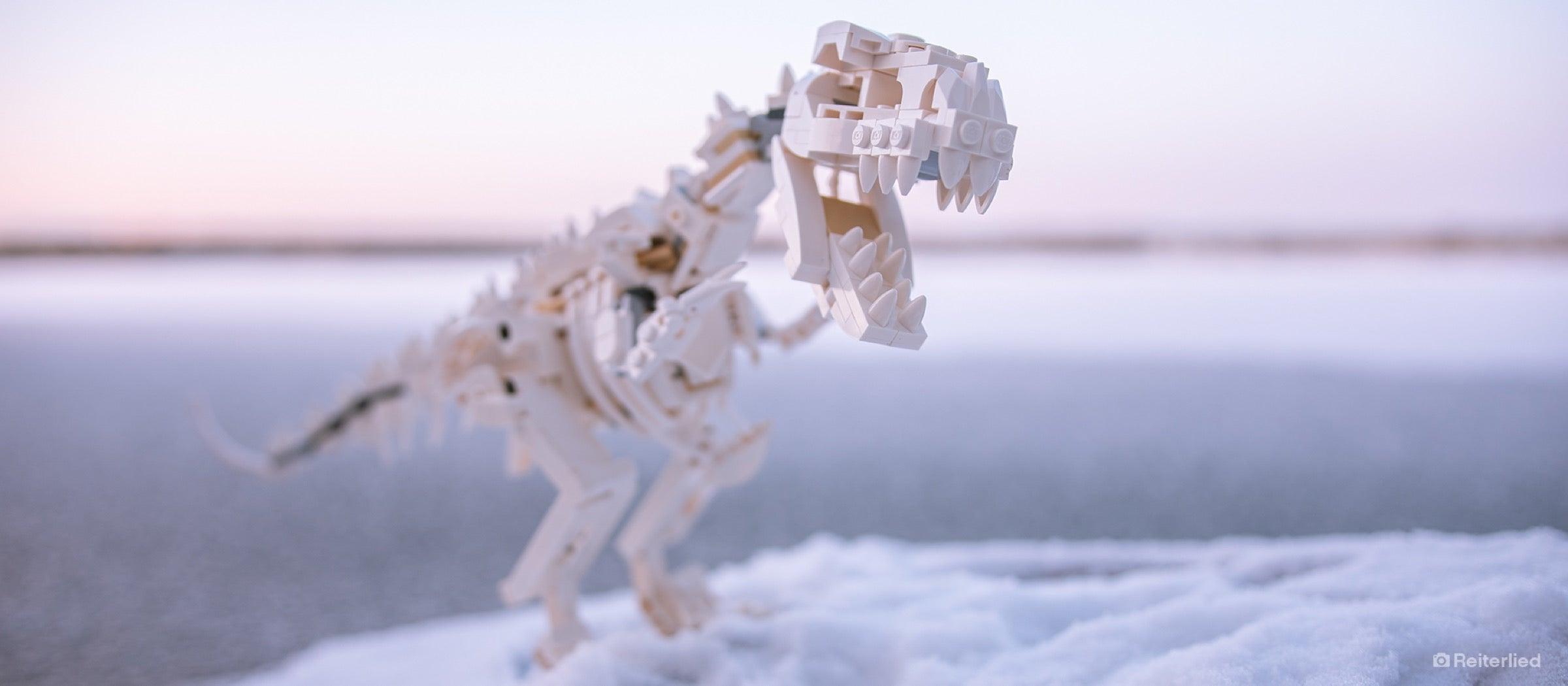LEGO Ideas Dinosaurier-Fossilien 21320 originalverpackt
