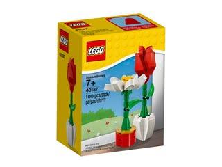 LEGO® Flower Display