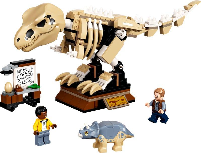 OfferteWeb.click 40-la-mostra-del-fossile-di-dinosauro-t-rex